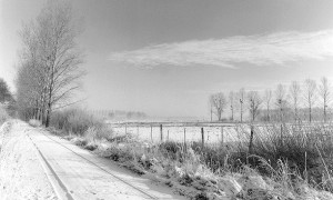 Naturpark Drömling im Januar 1986