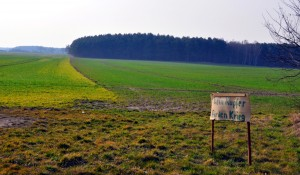 Feldern zwische Deschka und Zentendorf