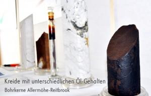 Auswahl von Bohrkernen aus dem Reitbrooker Ölfeld