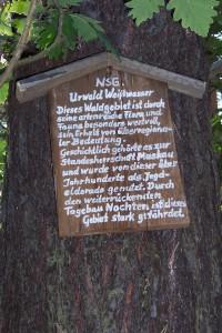 Vom Tagebau Nochten längst zerstört: Hinweistafel im einstigen Urwald Weißwasser.