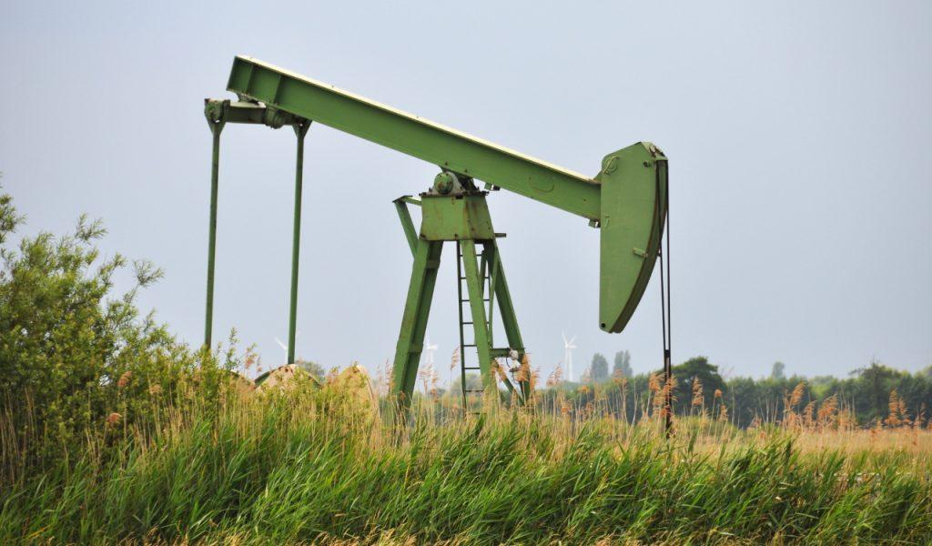 Eine Ölpumpe im NSG »Kirchwerder Wiesen« (Erdölfeld Reitbrook)
